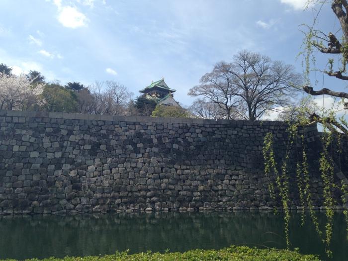 Hanami Osaka Castle (13)
