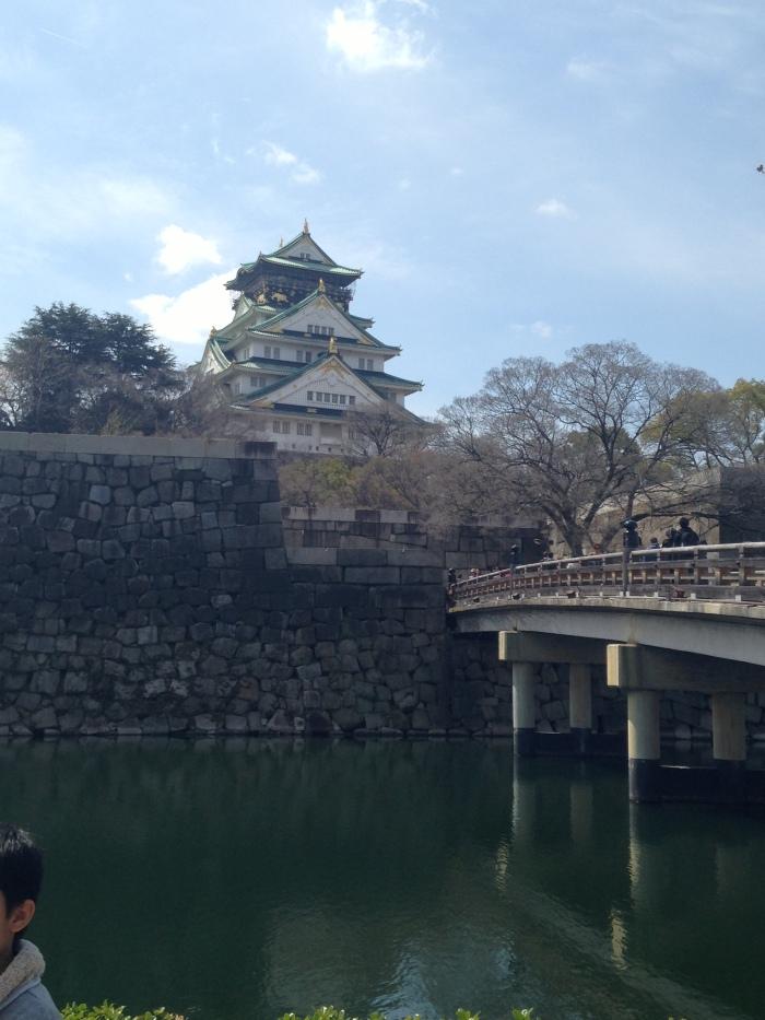 Hanami Osaka Castle (16)