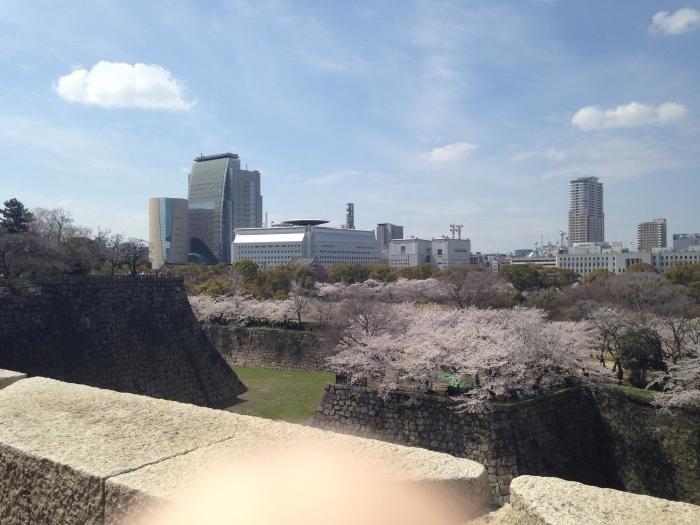 Hanami Osaka Castle (27)