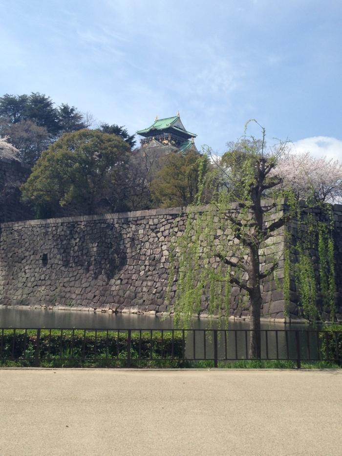 Hanami Osaka Castle (9)