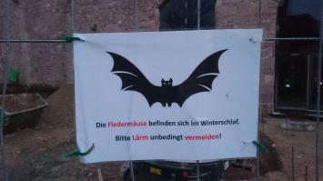 Heidelberg (32)
