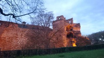 Heidelberg (36)
