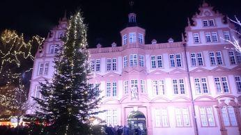 Mainz (24)