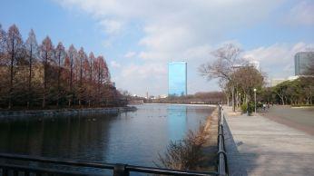 Osaka-jo (5)