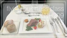 ANA Business Class NH209 NRT DUS