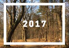 2017 New Year's Resolutions   lostmyheartinjapan.com