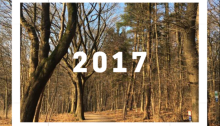 2017 New Year's Resolutions | lostmyheartinjapan.com